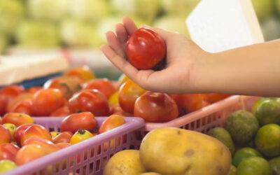 Anuncio de las bases reguladoras de las subvenciones para el fomento y promoción de la venta local de productos agroalimentarios en Aragón