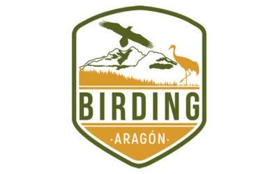 El proyecto de Turismo Ornitológico Birding Aragón alza el vuelo